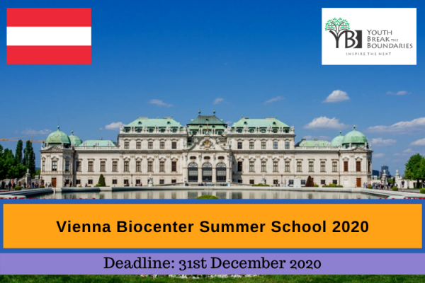 Vienna Summer School